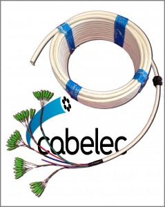Pigtail de 48 hilos de Fibra Óptica.
